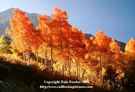 Fall Landscapes Pictures Landscape Pictures Autumn